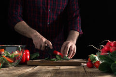 Man preparing salad with vegetables on wooden table. Moody style Royalty Free Stock Photography