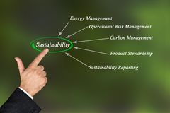 Diagram of sustainability. Man presenting components of  sustainability Stock Image