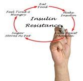 Insulin Resistance Stock Photos