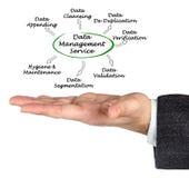 Data Management Service. Man presenting Data Management Service Stock Images