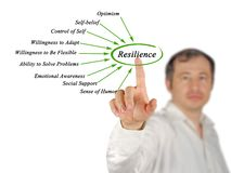Diagram of Resilience. Man presenting Diagram of Resilience Stock Photography