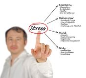 Diagram of stress consequences. Man presenting Diagram of stress consequences royalty free stock photography