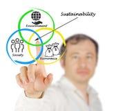 Presentation of diagram of sustainability Royalty Free Stock Photo