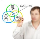Presentation of diagram of sustainability Royalty Free Stock Photography