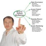 Security Defense Mechanisms. Man presenting Security Defense Mechanisms Royalty Free Stock Photo