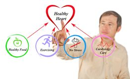 Healthy heart. Man presenting ways to Healthy heart royalty free stock photos