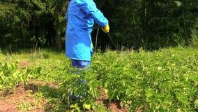 Man protect potato garden using agricultural pesticide sprayer stock footage