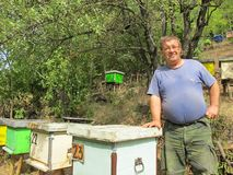 Man proud of his hives. A man in the apiary, proud of his hives and bees Stock Photography