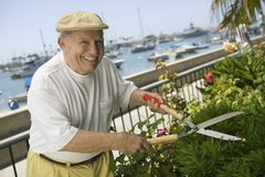 Man Pruning Plants Stock Images