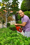 Man pruning shrub with tool in garden Royalty Free Stock Images