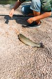 The man pulled the fish to the shore, wants to remove the hooks. next to it is a fishing rod. fishing. the fish lies on the ground royalty free stock photography