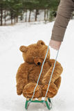 Man pulled sledges with Toy Bear Royalty Free Stock Photo