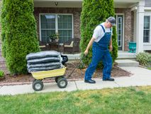 Man pulling a heavy wheelbarrow loaded with mulch stock photography