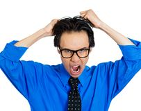 Man pulling his hair out Stock Image