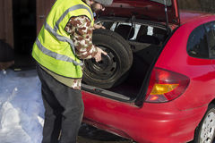 The man pulls out a spare wheel from the trunk of a car wearing a reflective vest. 