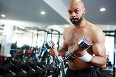 Man  Pumping Muscles in Gym. Portrait of strong muscular man pumping muscles working out with weights in modern gym, with copy space Royalty Free Stock Photo