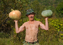 Man with pumpkins 4 Stock Images