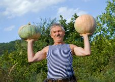 Man with pumpkins 9 Stock Images
