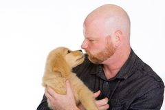 Man and Puppy. A handsome bald man with a beard happily holding his 9 week old Golden Retriever Puppy Stock Photo