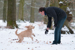 Man with puppy. Man playig with his puppy dog in a snow covered forest Royalty Free Stock Photo