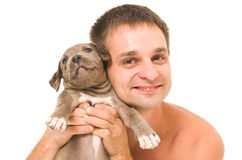 Man with a puppy pitbull Royalty Free Stock Image