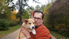 Man with puppy. Positive Man hold his corgi puppy stock video footage