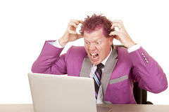 Man purple suit and hair laptop frustrated Royalty Free Stock Images