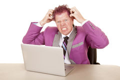 Man purple suit and hair laptop mad Stock Image