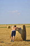 Man push bale of straw Royalty Free Stock Images