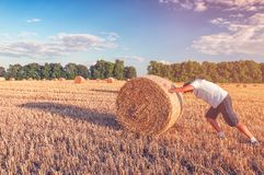 Man pushes straw bale Royalty Free Stock Photography