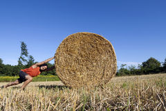 Man pushing hay bale Royalty Free Stock Photos