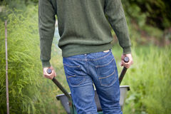 A man pushing a wheelbarrow on an allotment, rear view Royalty Free Stock Image