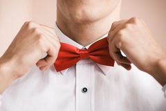 Man puts on red bow tie. Close up. Shallow depth of field. Royalty Free Stock Image