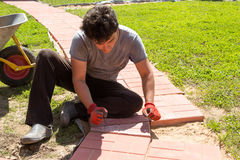 Man puts red concrete paving slabs Royalty Free Stock Photography
