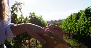 Man putting engagement ring on womans hand in vineyard