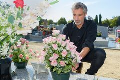 Man putting fresh flowers in graveyard royalty free stock photography