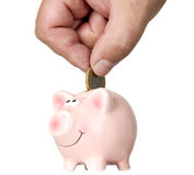 Man is putting money into saving pig Stock Images