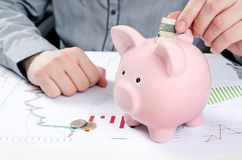 Man putting polish bill in piggy bank. Royalty Free Stock Photos
