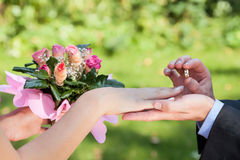 Man putting a wedding ring on his lady's hand Stock Images