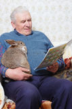Man with rabbit Stock Photos