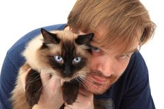 Man and ragdoll cat Stock Photo