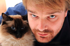Man and ragdoll cat. Isolated on the white background Royalty Free Stock Images