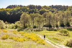Man with raised arms walking on summer green meadow surrounded b royalty free stock images
