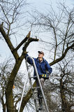 Man is raising up by a stepladder. Stock Photos