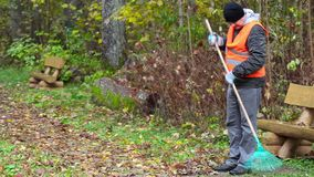 Man with rake collect leaves in the park stock footage