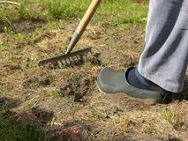 Man with rake doing work in the garden Stock Images