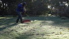 Man rake leaves in beautiful garden at cold autumn time morning. 4K stock video