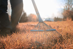 Man with rakes in autumn old grass Royalty Free Stock Photography