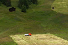 Man rakes hay with truck on steep hillside, Livigno, Italy Stock Image