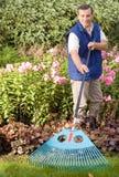 Man raking garden. Gardening in own house royalty free stock photos